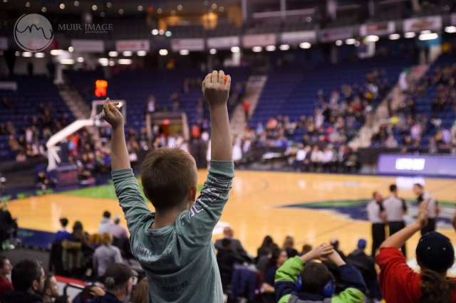 Fans at a Niagara River Lions Game at the Meridian Centre